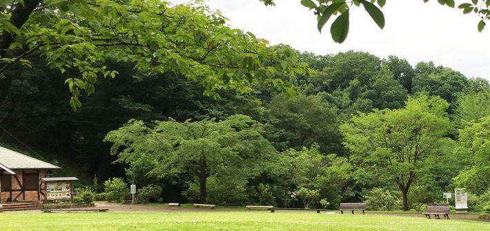 七沢森林公園 森のアトリエ