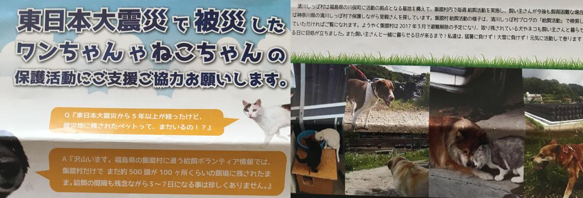 しっぽ村 被災地の犬・猫里親募集