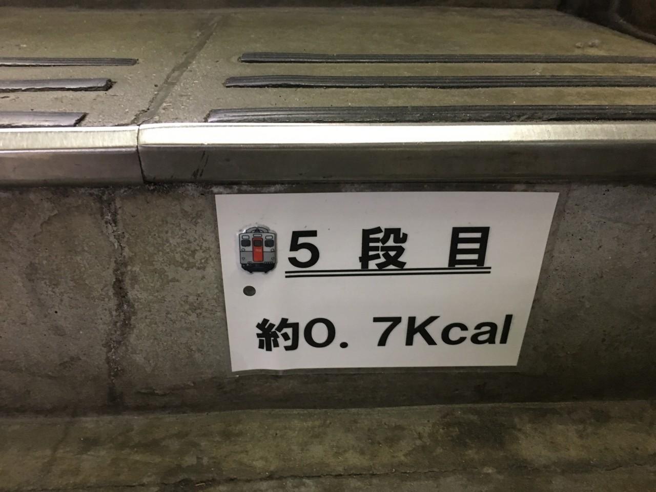 駅階段5段目