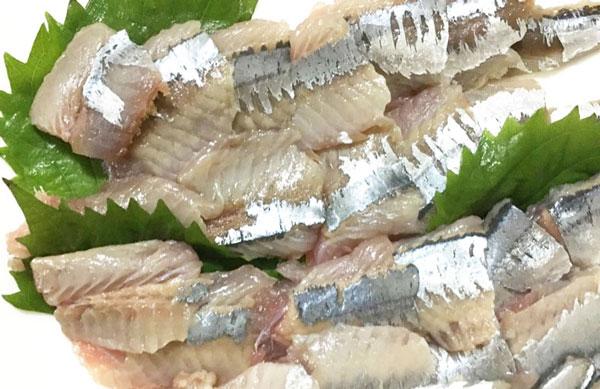 旬の秋刀魚サンマ刺身