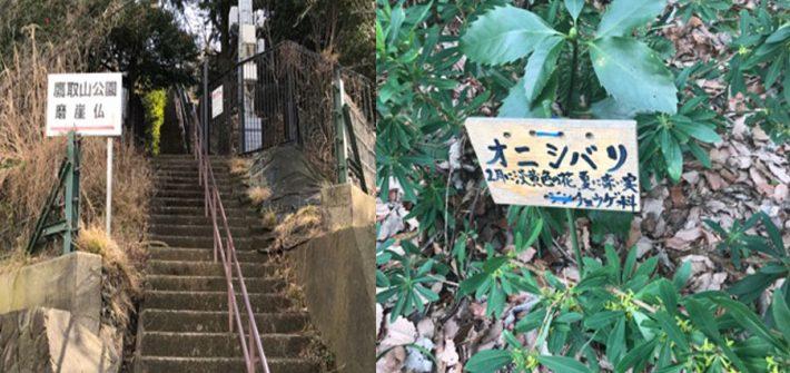 鷹取山入口