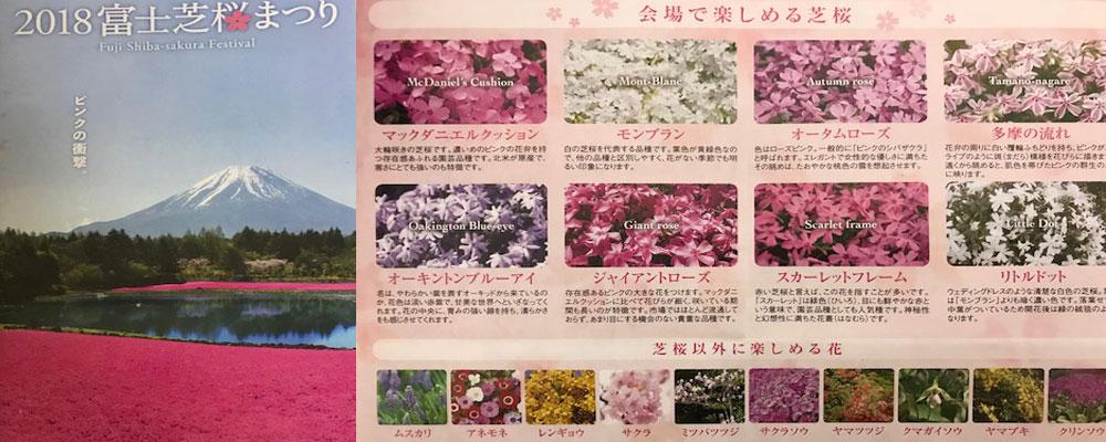 富士芝桜まつりパンフレット
